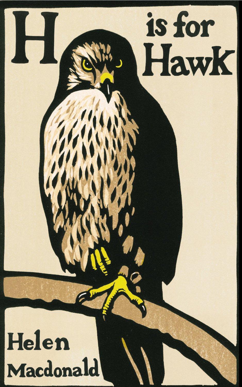 H Hawk