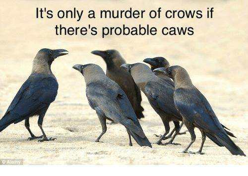 probable caws